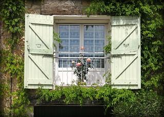 Roses, Tourtour, Var, Provence