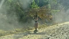 Tiss Abay Road leading to Blue Nile Falls, Ethiopia.