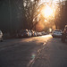 low sun by annapolis_rose
