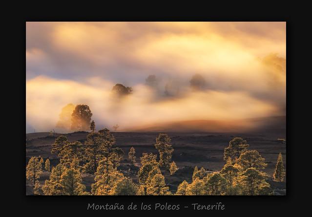 Montaña de los Poleos