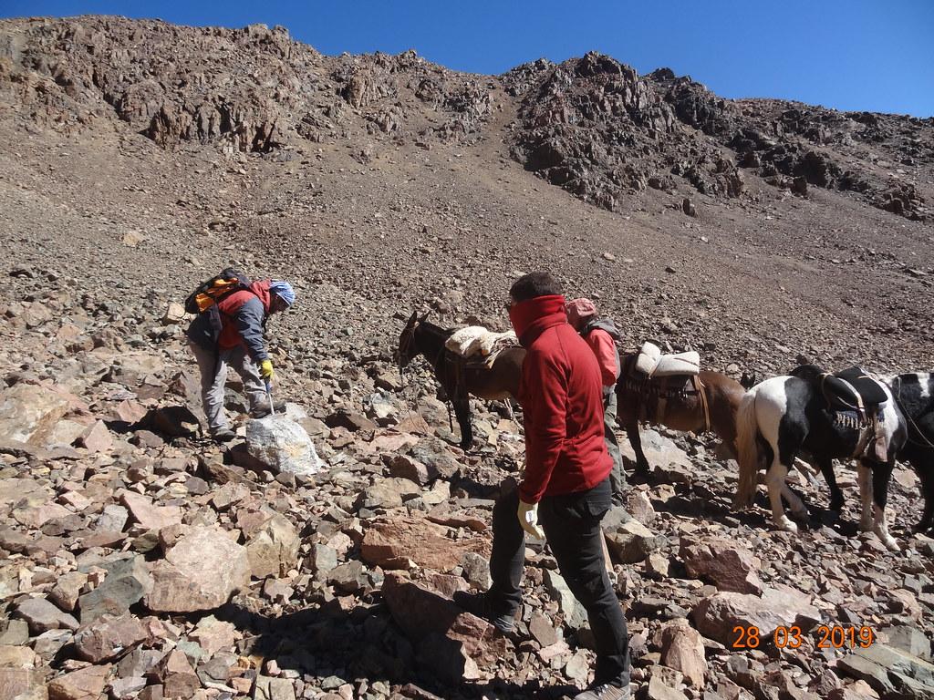 Azules 2019 - Los técnicos ascendieron a lomo de mula por la cordillera calingastina