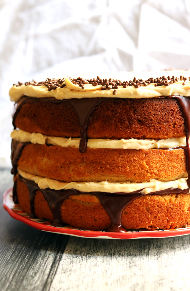 Chocolate and Peanut Butter Goober Cake