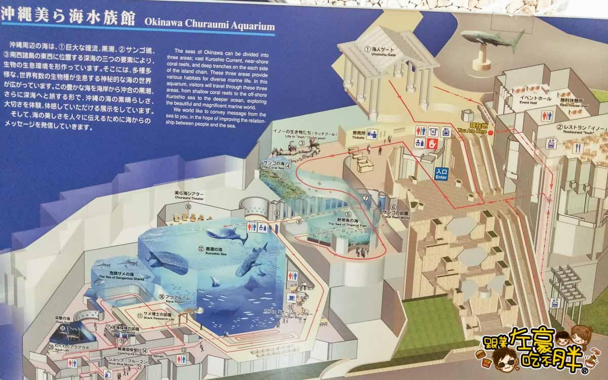 沖繩美麗海水族館-48