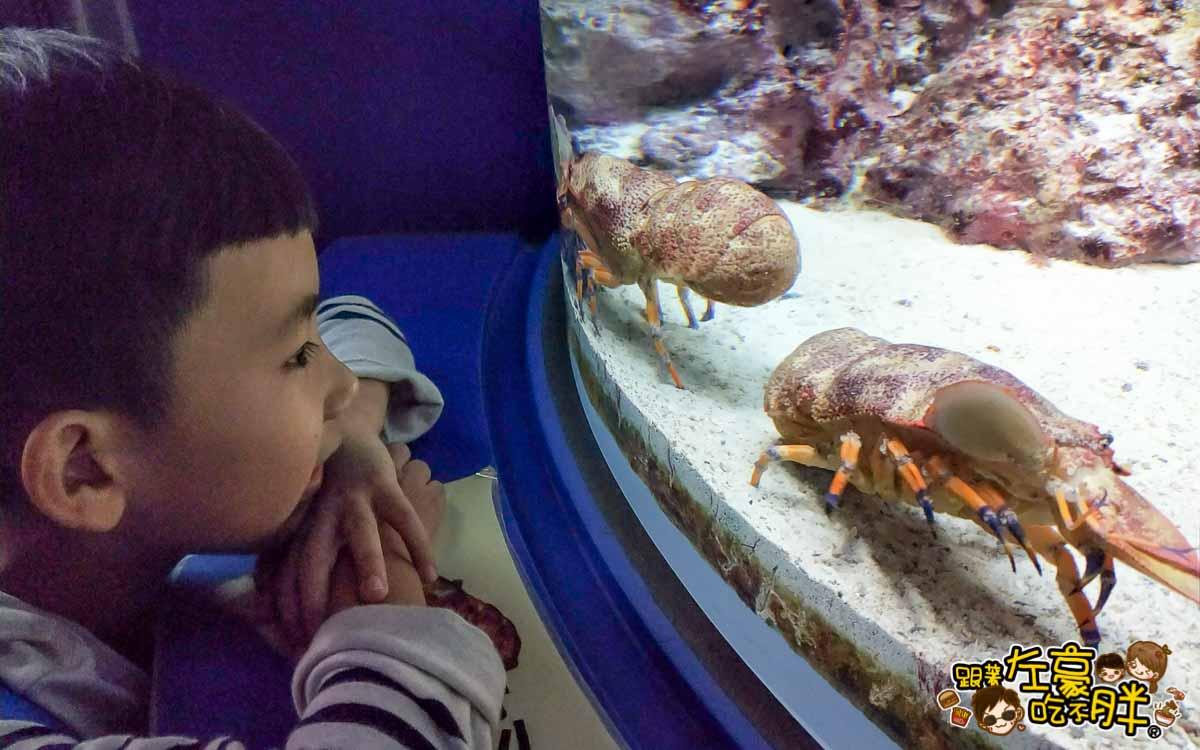 沖繩美麗海水族館-39