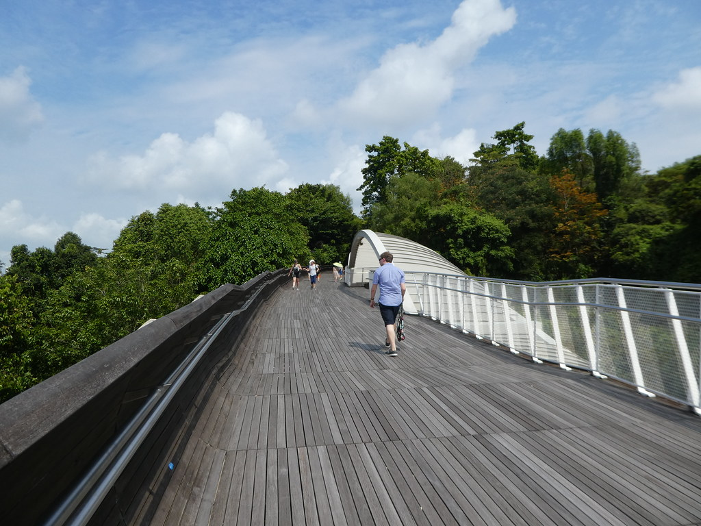 Henderson Waves bridge at Mt. Faber