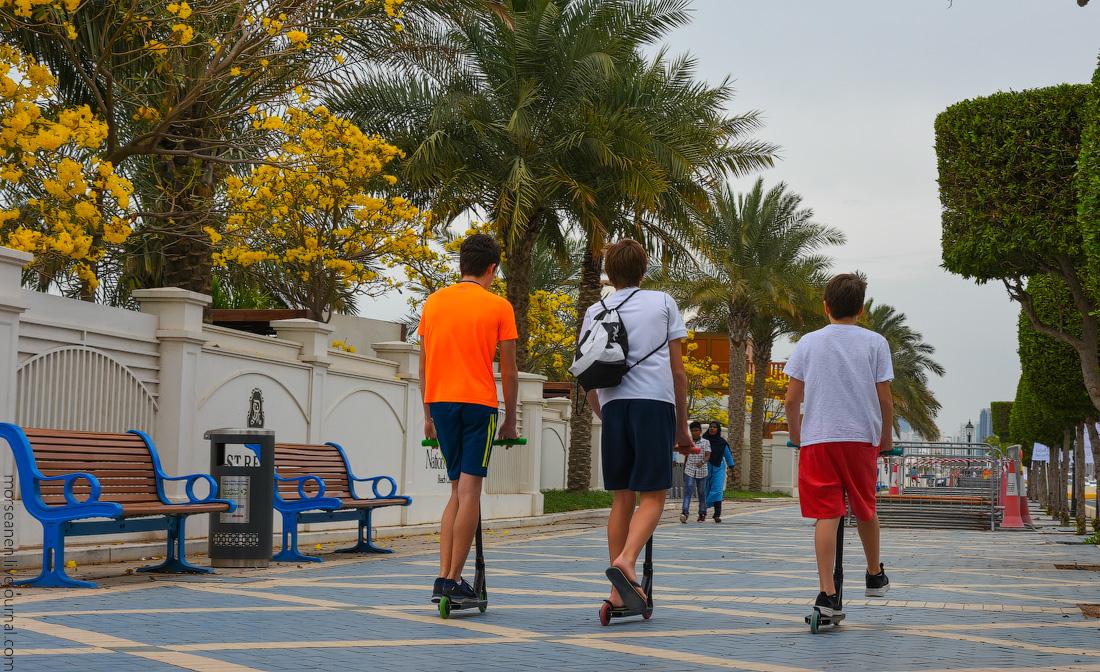 Abu-Dhabi-begining-(6)