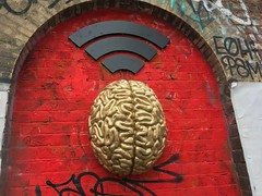 Wifi brain