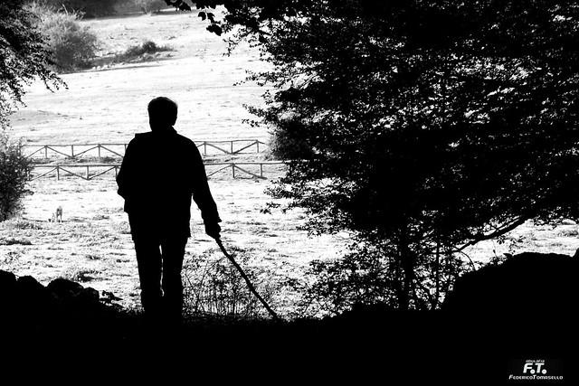 Il cercatore / The Seeker