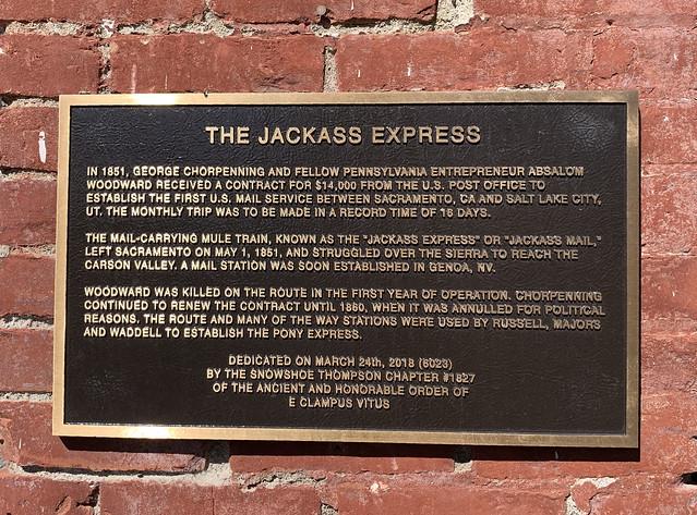 The Jackass Express