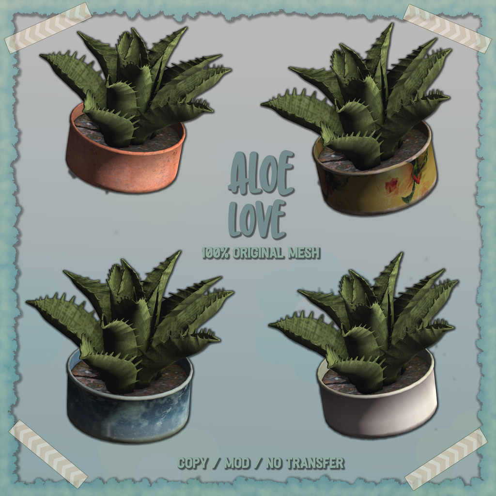 crate has Aloe Love for Saturday Sale - TeleportHub.com Live!
