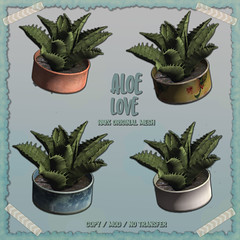 crate has Aloe Love for Saturday Sale