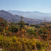 Costa Rica, Direction Parc National Manuel Antonio