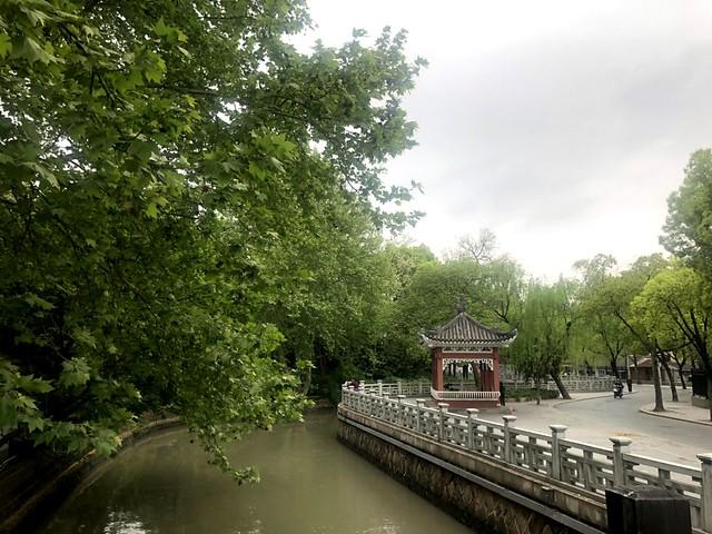 20190420玉書上海跑步 (3)
