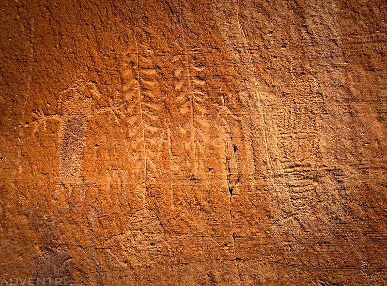 Petroglyph Details