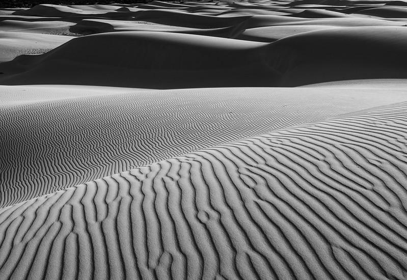 Bilbunya Dunes (Eucla, Western Australia )