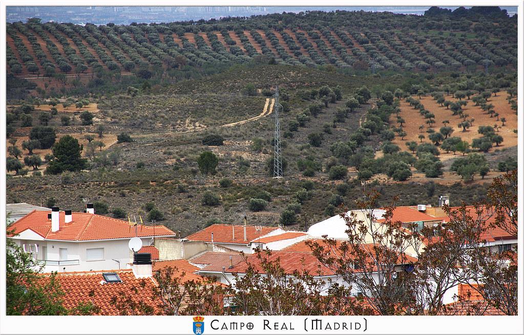 Tierras de Campo Real de Madrid