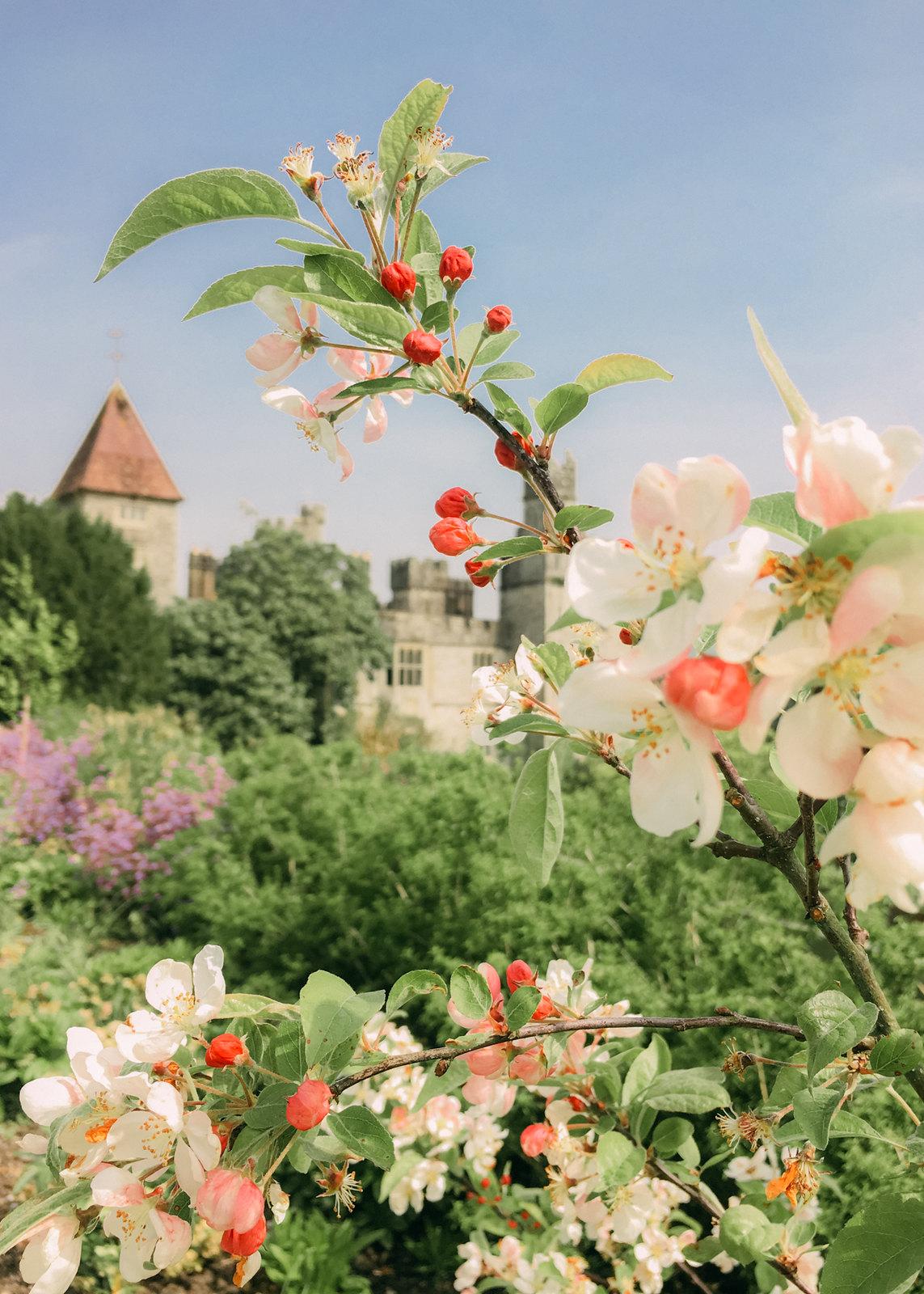 lismore castle-17