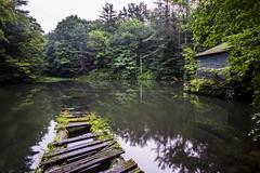 monks pond
