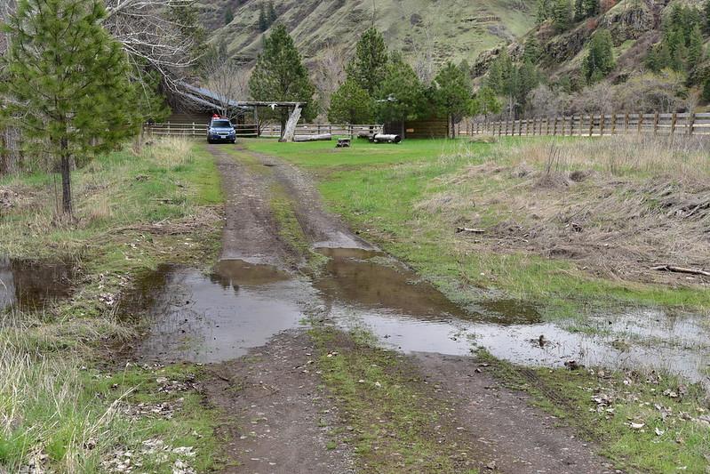 Wet driveway