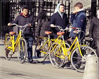 Biking in Town