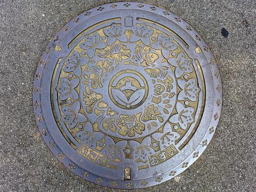 Futaba Yamanashi, manhole cover (山梨県双葉町のマンホール)