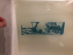 cyanotype on thin mulberry paper