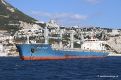 Ship. Jinling Confidence 9798337