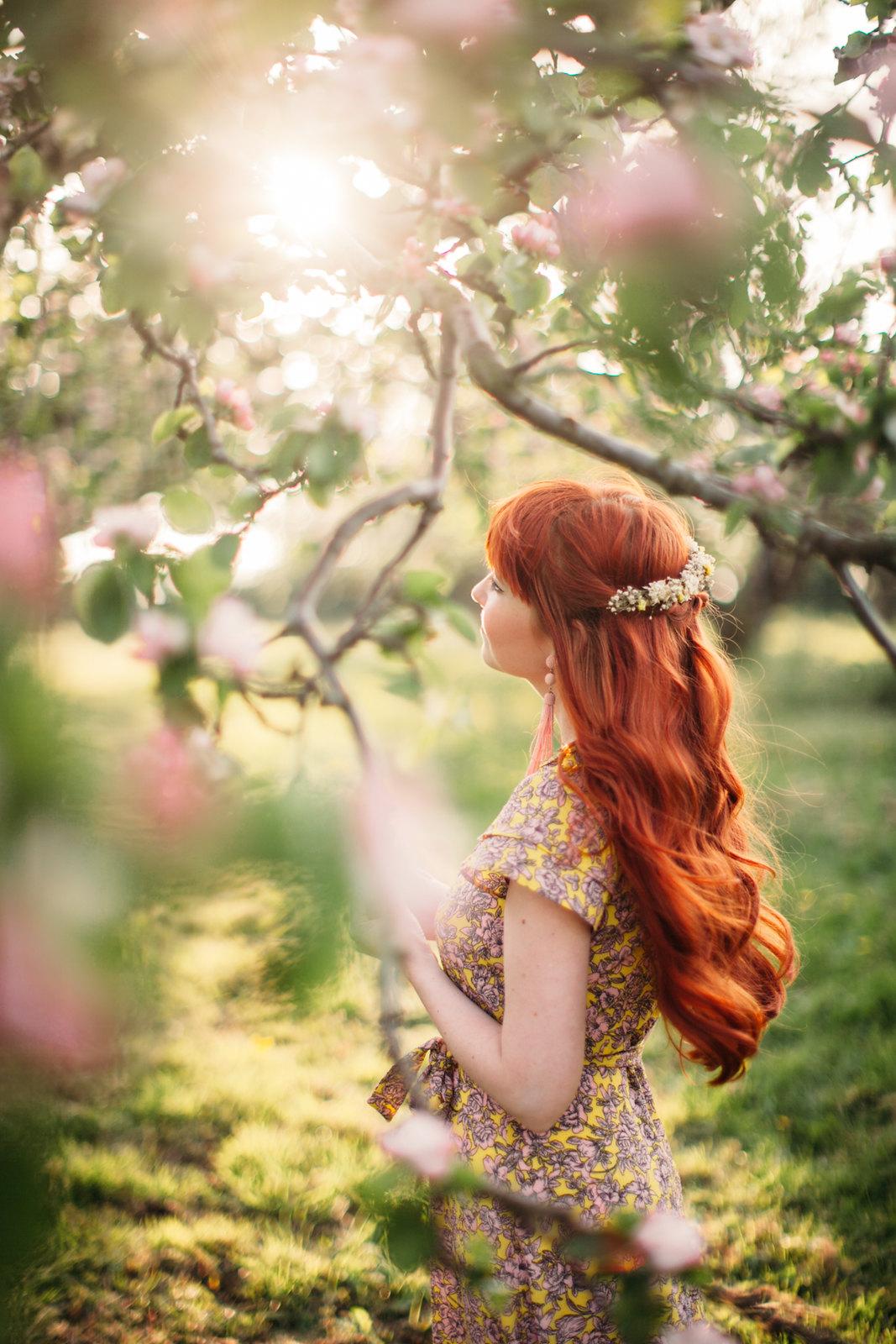 apple blossom-11
