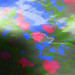 IMG_0541_1.jpg