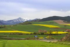 Paisaja de La Rioja 6