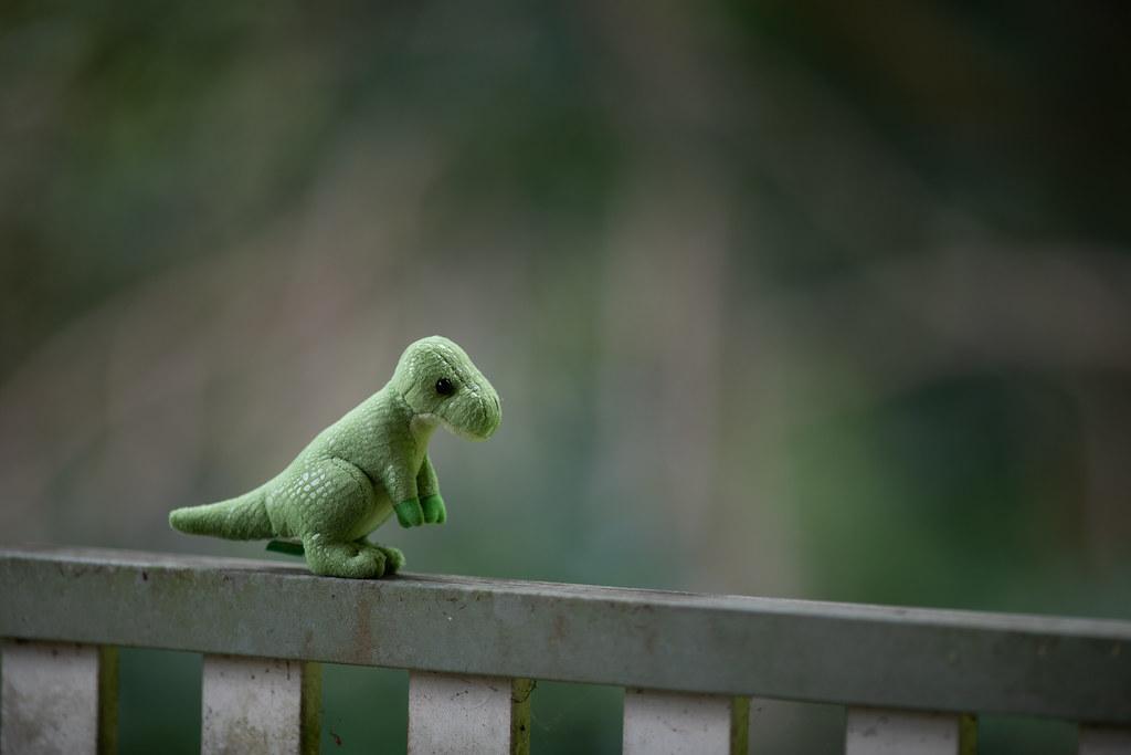 Image: Toy Dinosaur - Canon EF 200mm f/1.8L USM at f/1.8