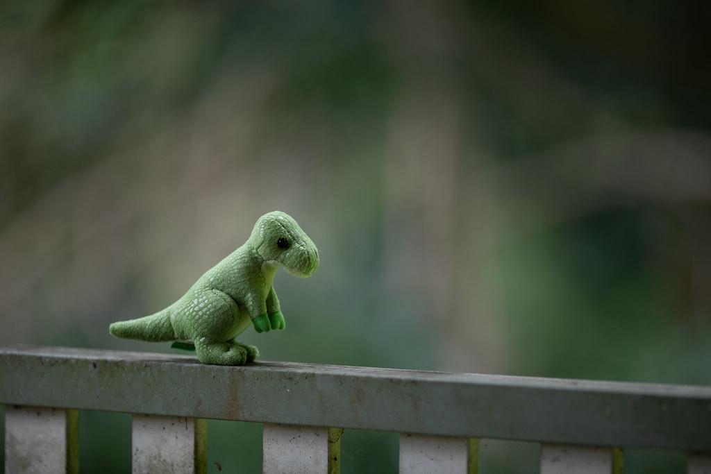 Image: Toy Dinosaur - Canon EF 200mm f/2L IS USM at f/2
