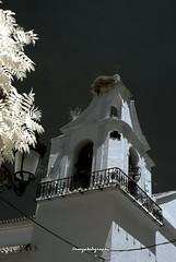Campanario Iglesia San Telmo (Infrared)