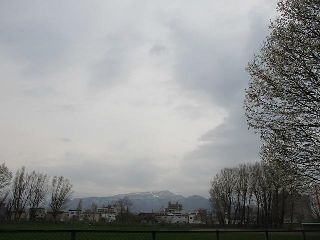 IMG_4173