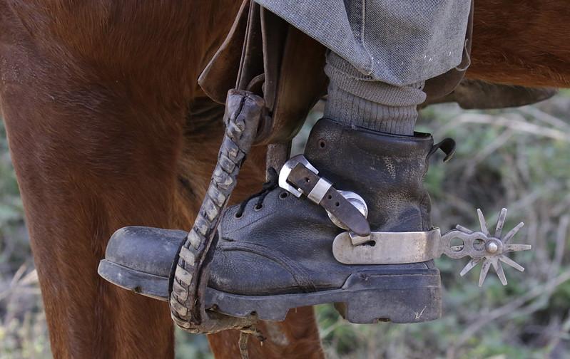 Cowboy 199A0743