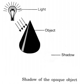 Light, Shadows and Reflection Class 6 Notes Science Chapter 11 1