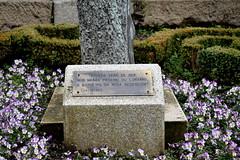 4 Placa monumento, en Ourense.