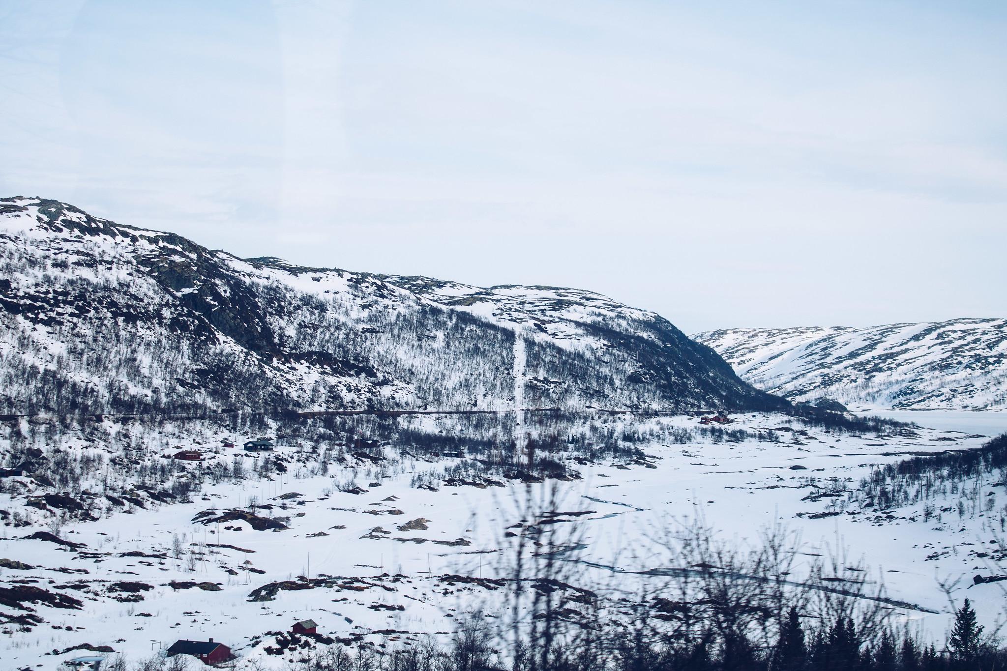 Norway in a nutshell - Myrdal till Oslo tåg - reaktionista.se