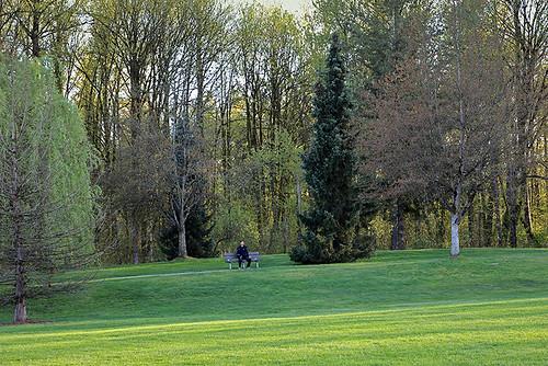 Head out amongst the trees / Potraži drveće