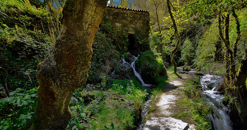 Muiño preto de Hervés(A Coruña)-Old water mill.