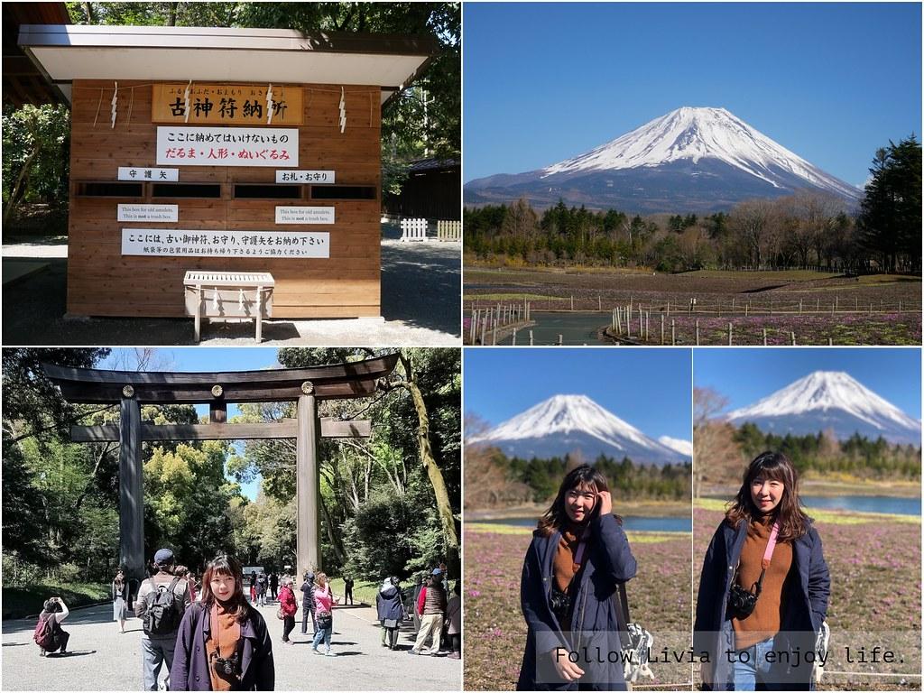 【日本東京】最多日本人參拜的明治神宫│世界遺產富士山的 2019年富士芝櫻祭