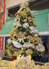 Barbados Christmas Tree