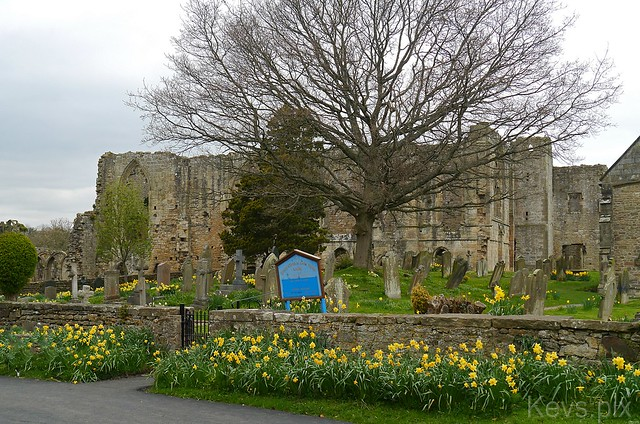 Walk to Easby Abbey-14