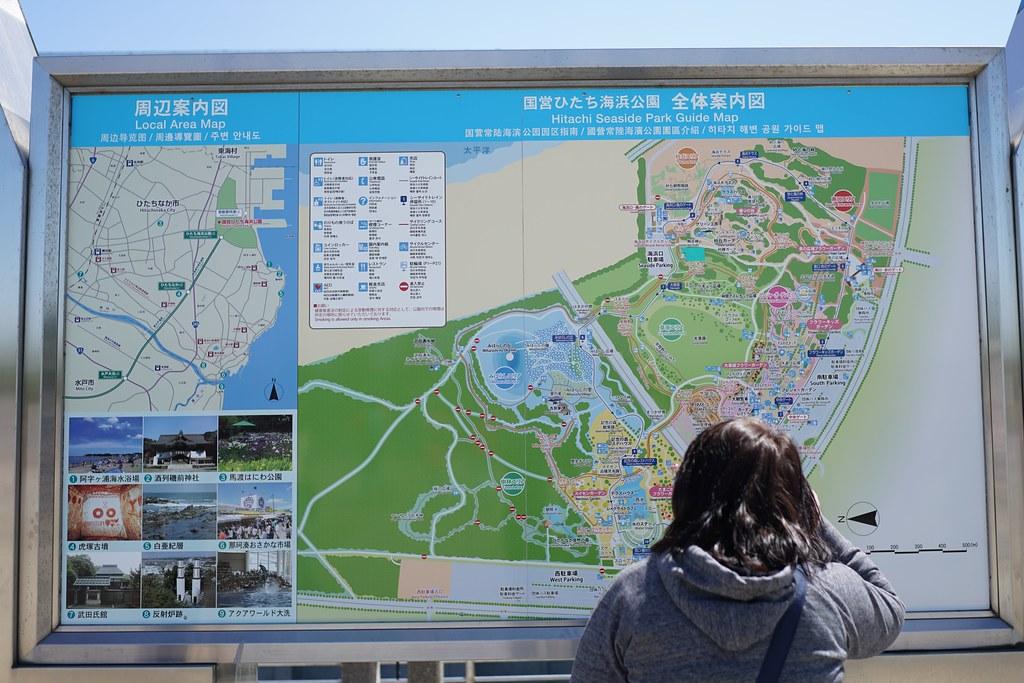 ひたち海浜公園_園内マップ