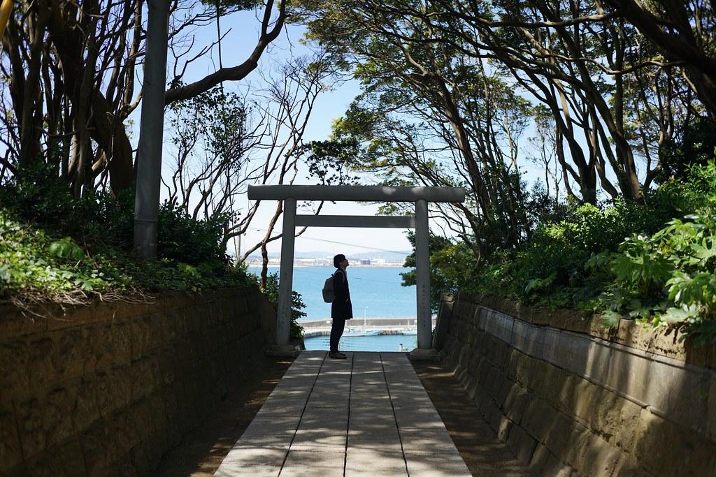 酒列磯前神社の樹叢と海