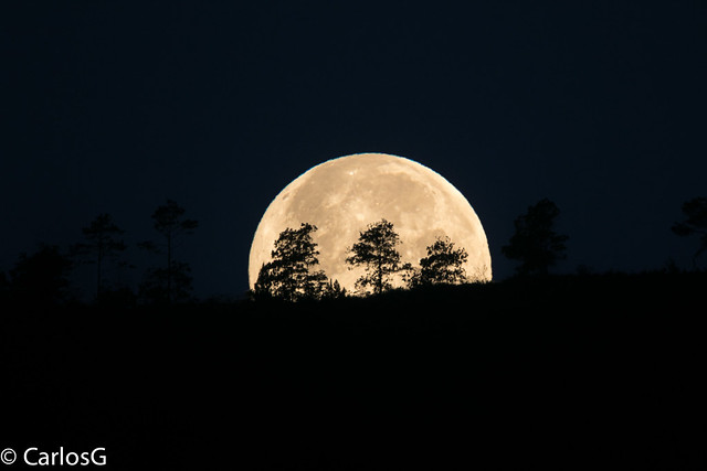 Selene Acostándose / moonset