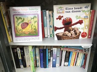 Minibieb RJ Schimmelpenninckhof Deventer   by Raymond Snijders