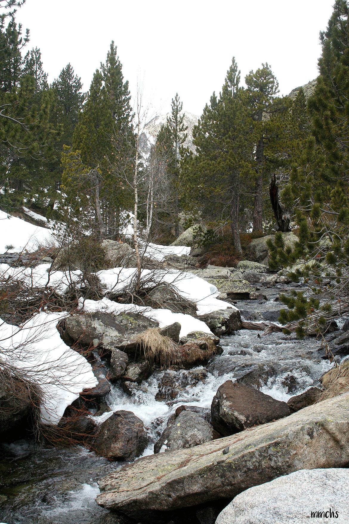 Río en el Parque Nacional de Aigüestortes.