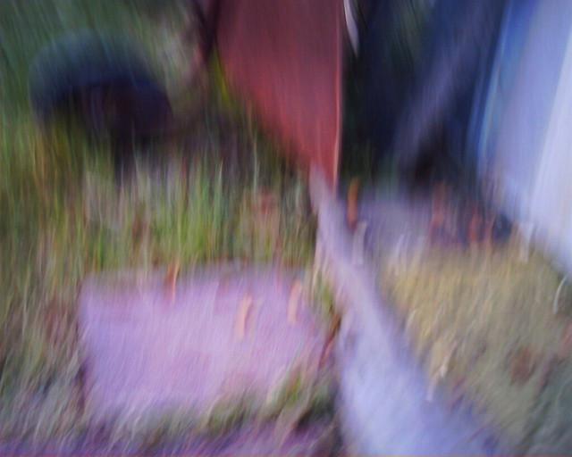 rusty wheelbarrow 5 1 19