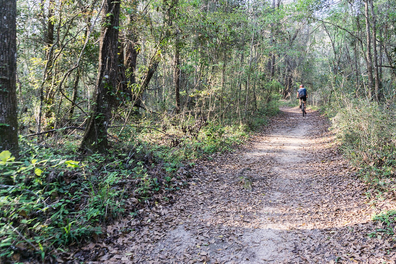 Lake Overstreet Trail, Alfred B. Maclay Gardens State Park, Tallahassee, Fla., March 2019